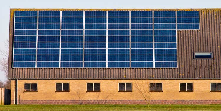 zonnepanelen op boerderij